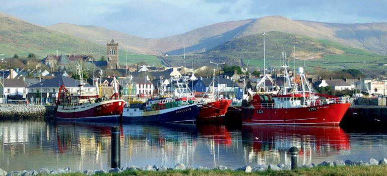 dingle-harbour